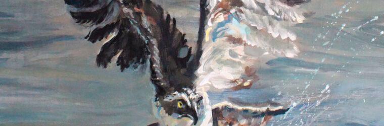Osprey, Kennebec Mural